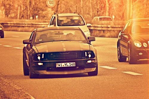 Mustang6.jpg
