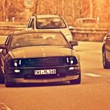 Mustang6