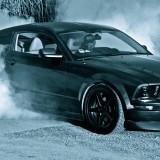 MustangBurnout