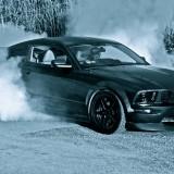 MustangBurnout2