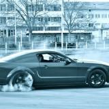 MustangDoughnut4