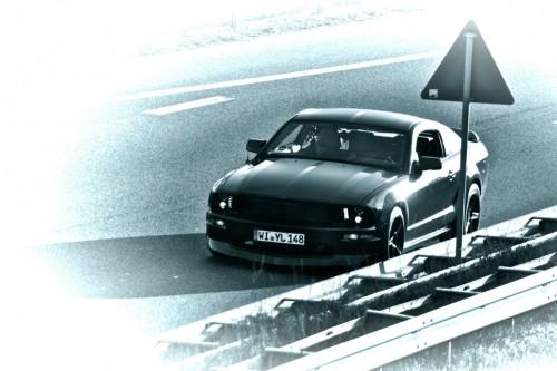 MustangDoughnut7.jpg