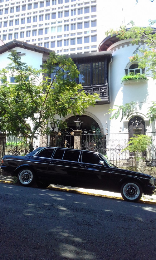 BARRIO-AMON-MANSION.-COSTA-RICA-300D-MERCEDES-LANG-SERVICE.jpg