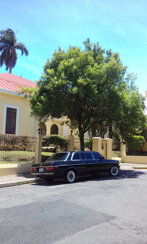 COSTA-RICA-MANSION-DOWNTOWN.-MERCEDES-300D-LANG-LIMOUSINE.jpg